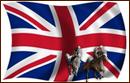 england pferderennen
